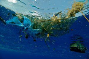 """Как мусор убивает мировой океан на""""Бит Жизни!"""""""