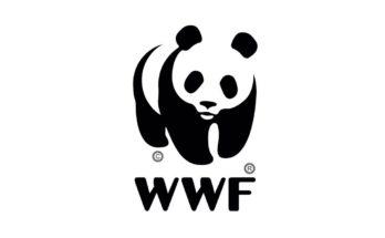 День рождения Всемирного фонда дикой природы (WWF)
