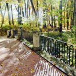 Осенний этюд в Царицыно