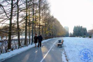 1 декабря - зимы морозное начало