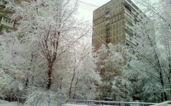 Зимы цепкие объятья