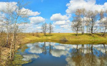 Пробуждение природы весной