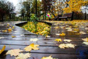 Осенняя пора: В Москву пришла настоящая осень