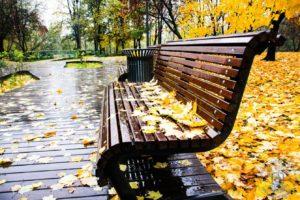 Осень в Московском парке
