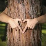 Сбережем природу вместе