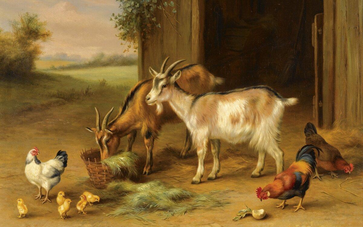 Издревле животные были спутниками человака