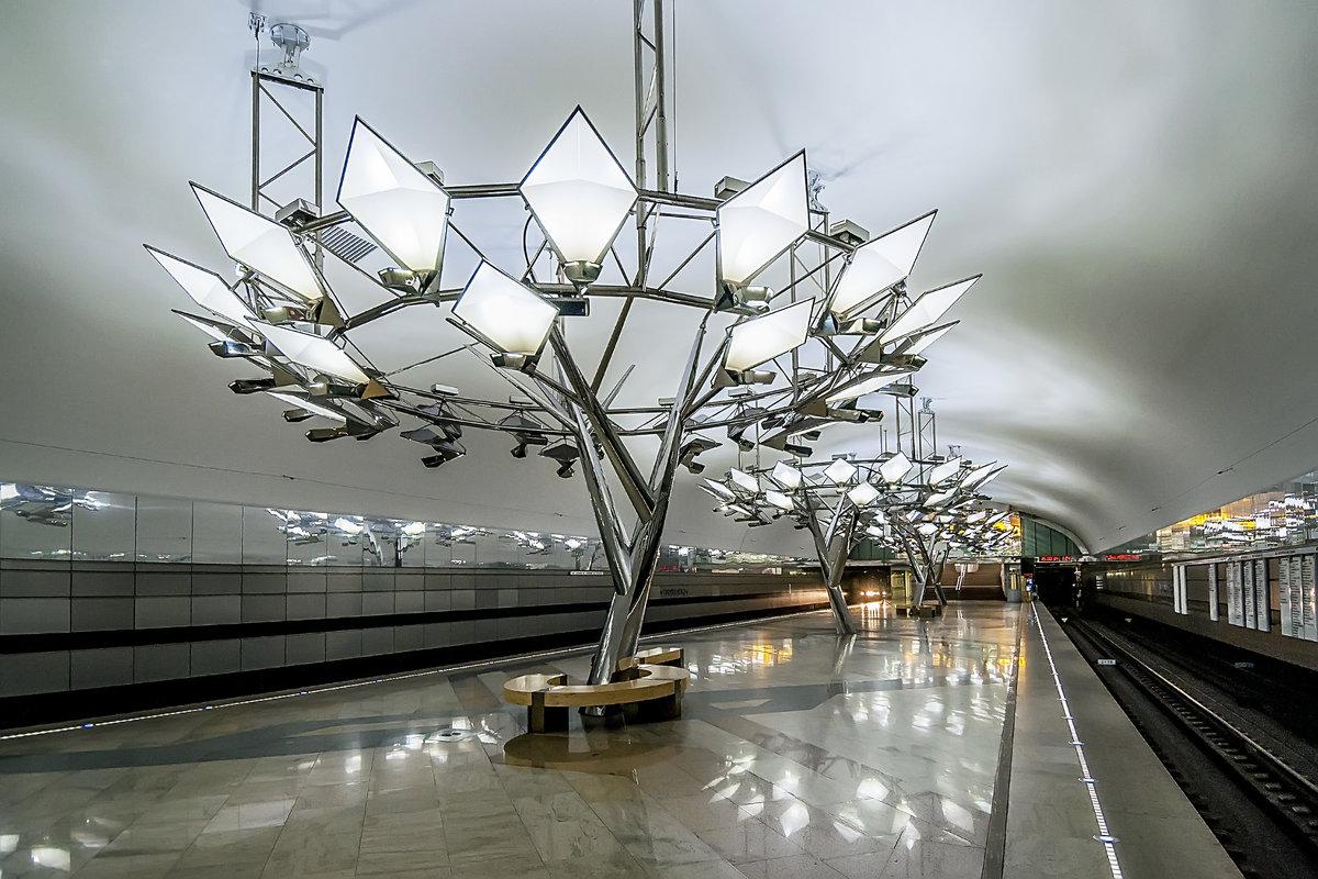 Станция метро Тропарево Сокольнической ветки