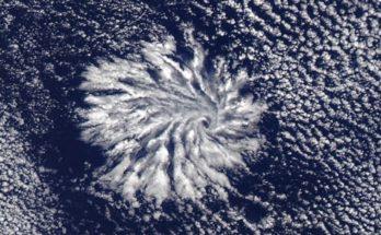 Спутник НАСА «Аква» 29 января запечатлел у западного побережья Австралии так называемые актиноформные облака