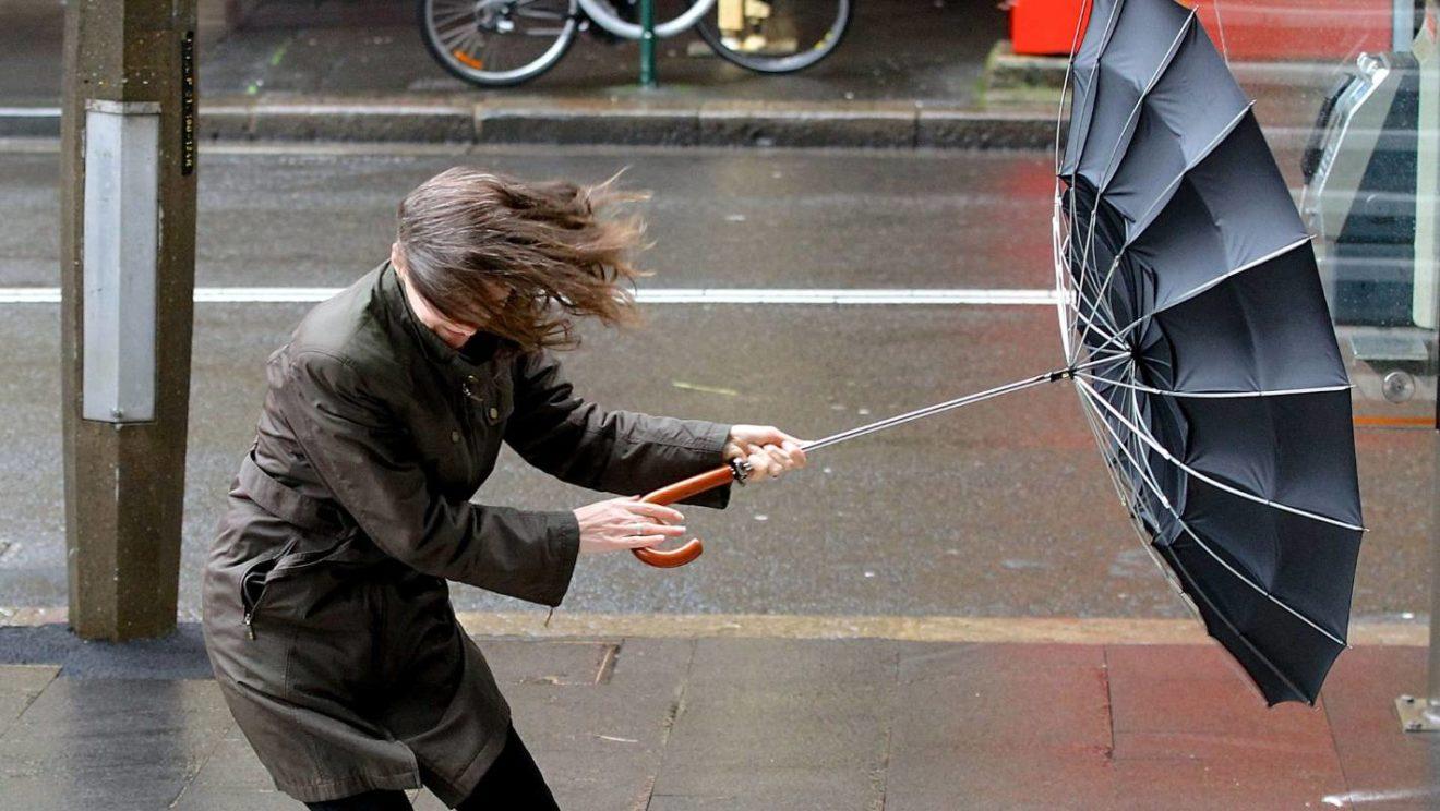 МЧС предупредило жителей столичного региона об усиление ветра