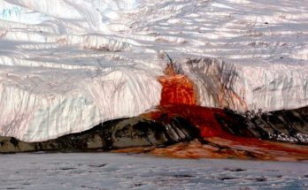 """Кровавый водопад"" в Антарктиде"