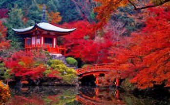 Прекрасная Япония