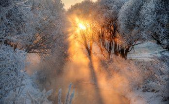 Аномальные морозы пришли в столицу в середине января